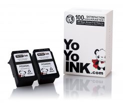 Remanufactured Canon PG-245XL High Yield Black Ink Cartridge (2 Black)