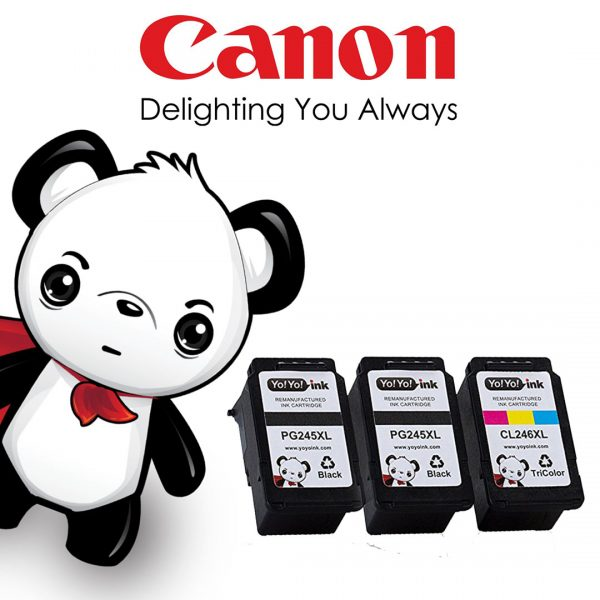 Remanufactured Canon pg-245 xl & cl-256 xl Printer Ink Cartridges