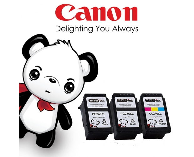 Remanufactured Canon pg-245 xl / cl-256 xl Printer Ink Cartridges